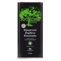 Olive oil extra virgin 5l Pop metallic