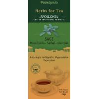 Herbs of Crete - Sage